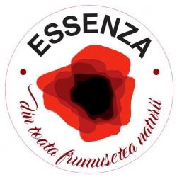 Floraria Essenza Timisoara:Floraria Essenza, Aranjamente florale evenimente, livrari flori la domiciliu, Timisoara